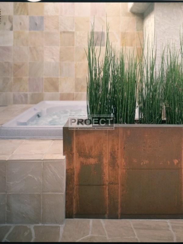 ванная комната с растениями